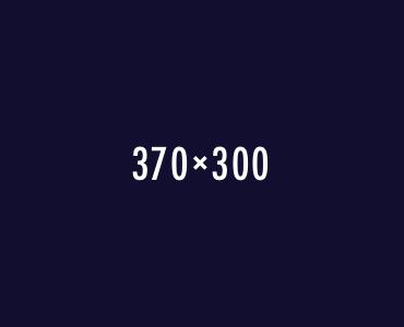 sample_370x300